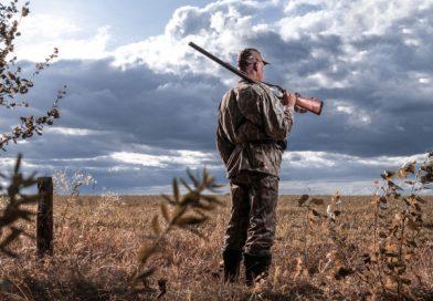 Den bedste forhandler af jagtudstyr og buegrej